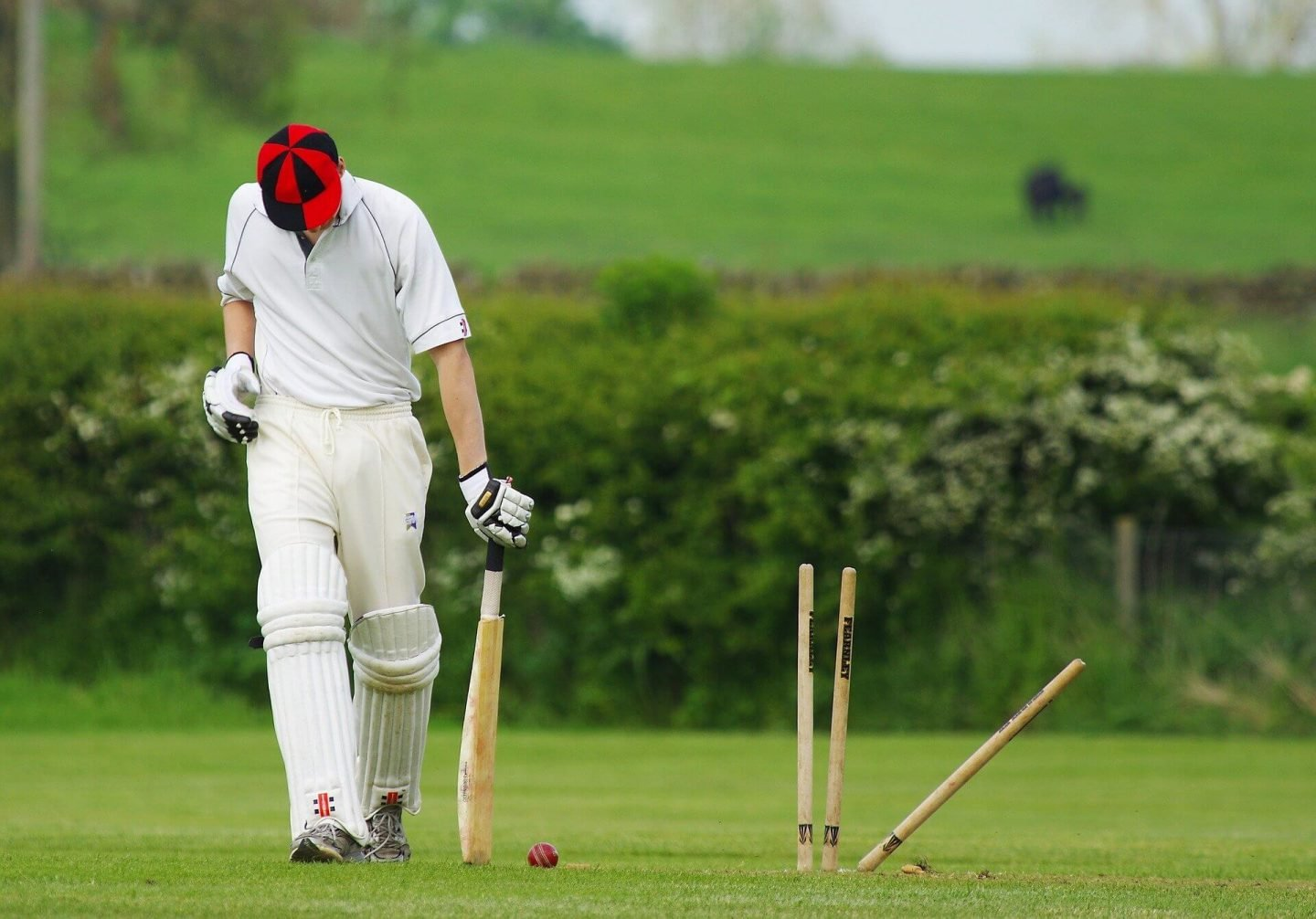 Cricket Quiz Questions and Answers - Batsman Bowled