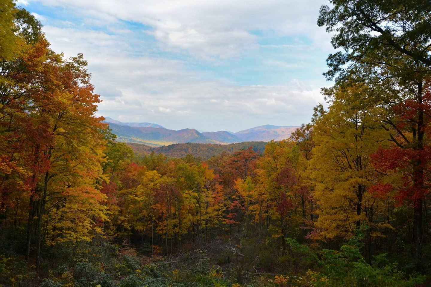 Geography trivia questions and answers - Smokey Mountain Appalachians