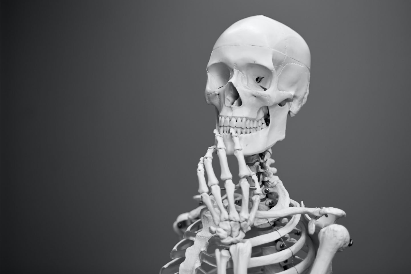 Science questions - the human skeleton