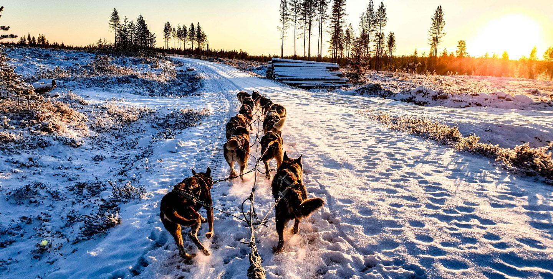 Geography world quiz- Finland